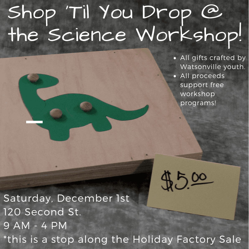 Shop Til You Drop at the Science Workshop! (1)