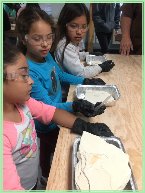 Girls participating in a fossil program
