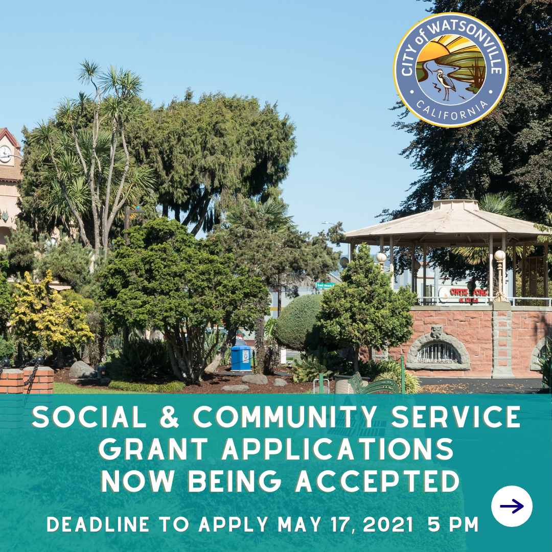 social and community services application process open