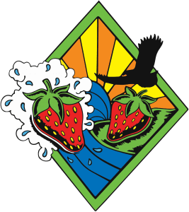 Triangular sticker with strawberries and a bird