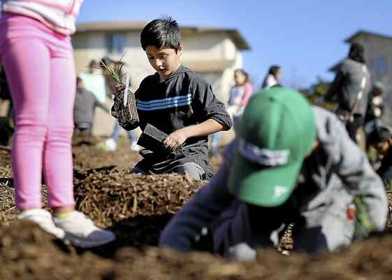 Child planting at World Wetlands Day