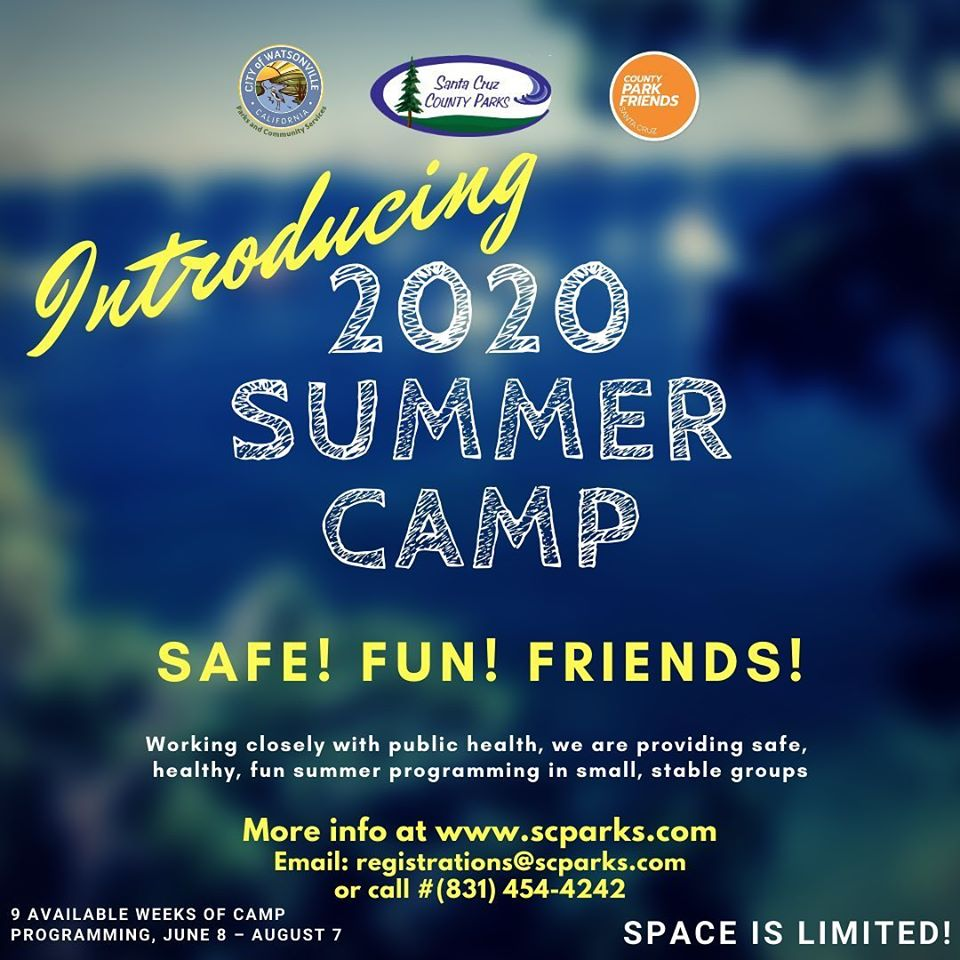 2020 summer camp flyer Opens in new window