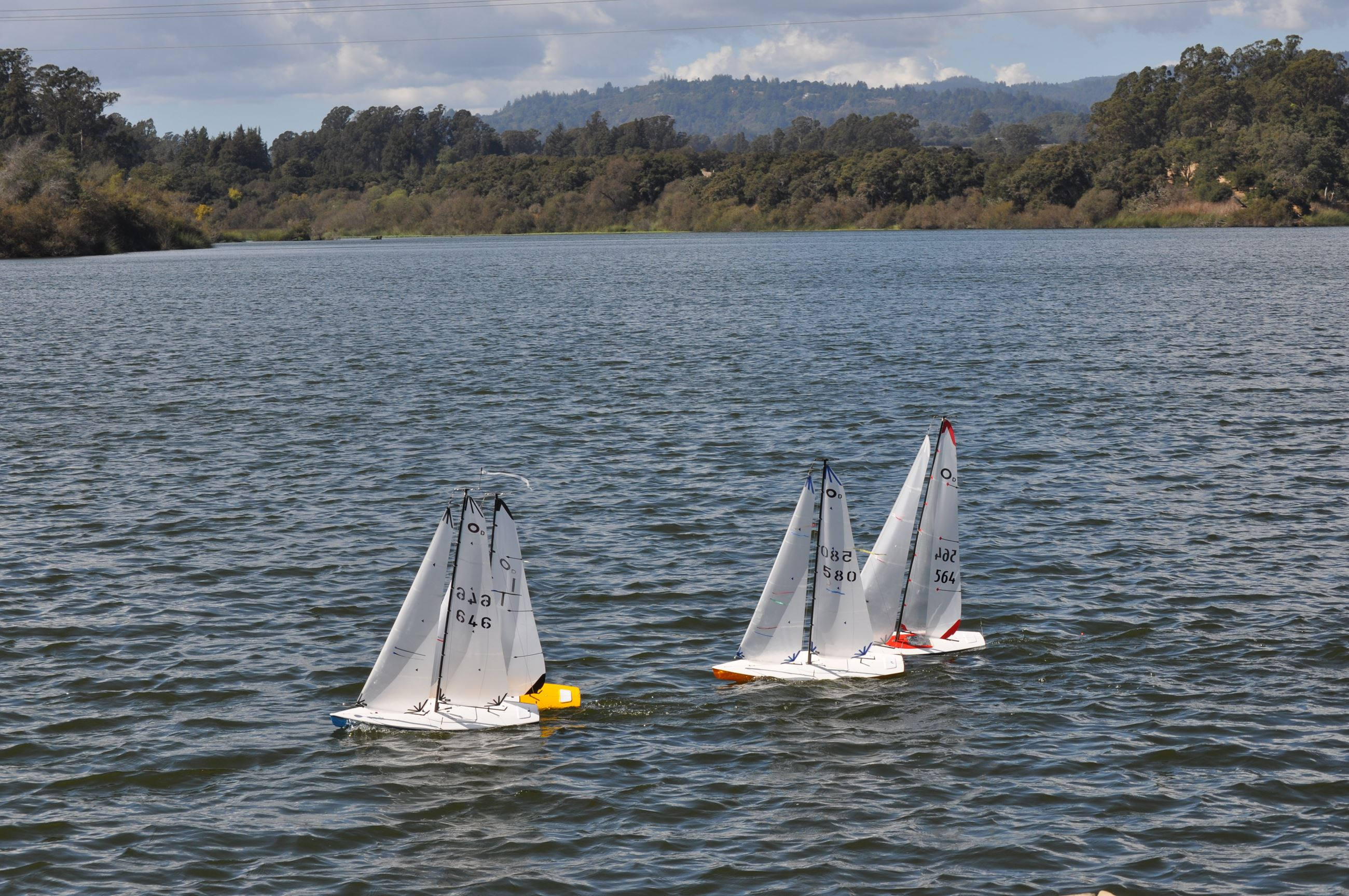 Sail boats on Pinto Lake