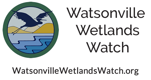 wetlands watch logo