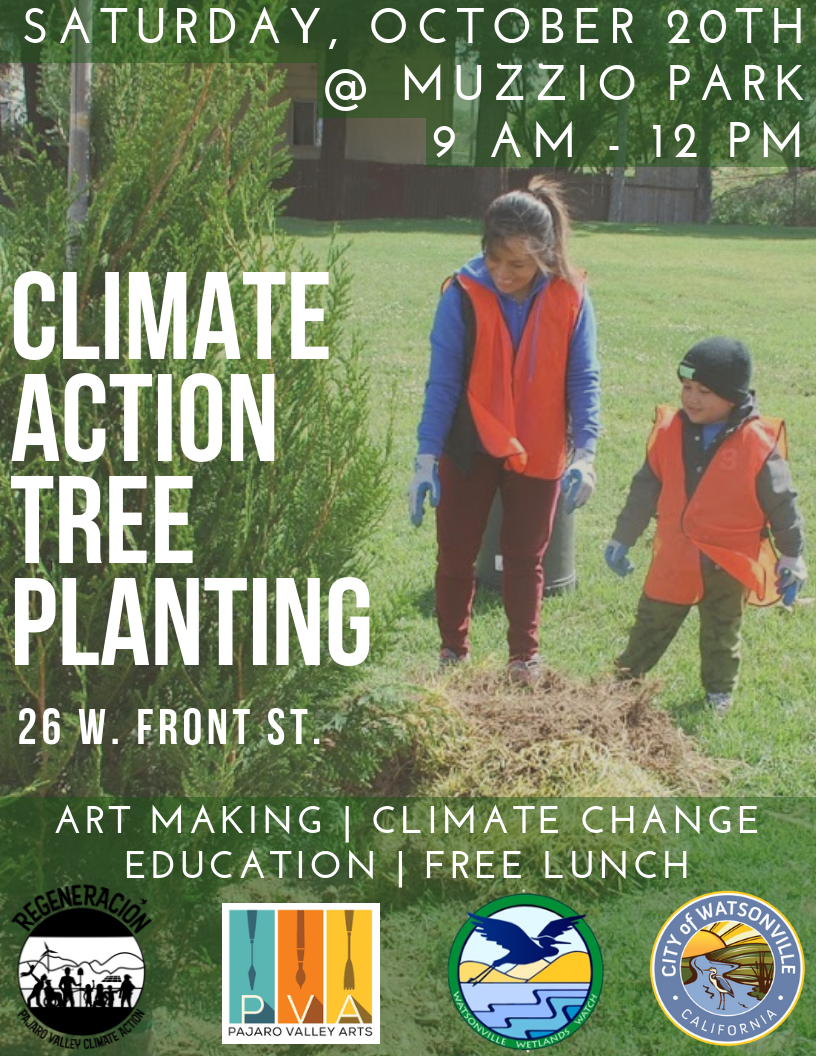climate change tree planting ffvv1
